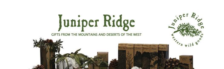 Juniper Ridge / ジュニパーリッジ
